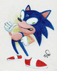 Sonic, the Freakhog