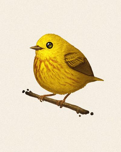 Fat_bird_-_yellow_warbler-mike_mitchell-gicle_digital_print-trampt-76397m