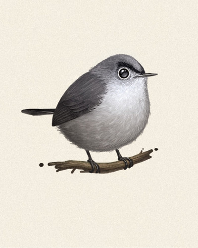 Fat_bird_-_blue-gray_gnatcatcher-mike_mitchell-gicle_digital_print-trampt-76398m