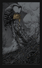 Converge_-_minneapolis_mn_2012-aaron_horkey-screenprint-trampt-78035t