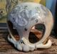 Snake Dissection Skelve Mask
