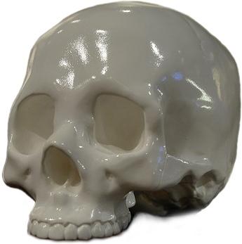 Genuine_fake_human_-_white-headlock_studio-genuine_fake_human-shelterbank-trampt-92296m