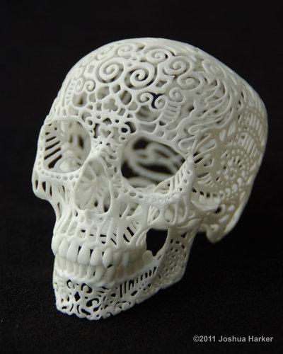 Crania_anatomica_filigre_small-joshua_harker-polyamide-trampt-94776m