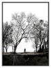 Wish_you_were_here_11-dan_mccarthy-screenprint-trampt-97380t
