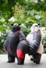Panda_king_1_offs-woebots_aaron_martin-panda_king-silent_stage_gallery-trampt-97900t