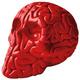 Skull Brain - Red