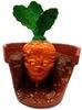 Dead Carrot