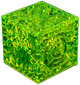 Reticulated Box - Slime