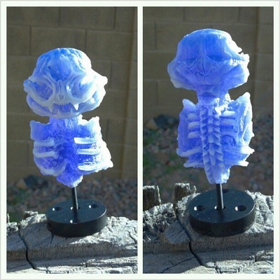 Misfortune_cat_skeleton_-bluewhite-scott_wilkowski-misfortune_cat-trampt-115586m