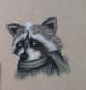 Woodland Critters: Raccoon