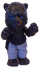 Black and Blue Bear