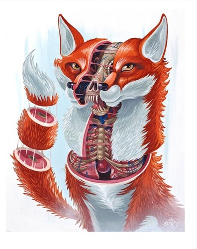 Dissection_of_the_fox-nychos-gicle_digital_print-trampt-124163m