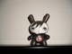 Looking_for_name-64_colors-dunny-trampt-130755t