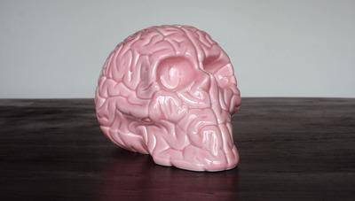 Skull_brain_porcelain_pink-emilio_garcia-porcelain-kolin_tribu-trampt-132365m