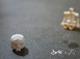 Micro Skelevex - Lego Compatible