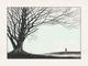 Memory_remains_gid-dan_mccarthy-screenprint-trampt-138606t
