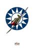 P-40 FLYING TIGER PRINT