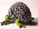 Frogger Lapolab Jumping Brain