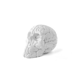 Mini_skull_brain_white-emilio_garcia-skull_brain_emilio_garcia-lapolap-trampt-164644m