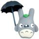 Baldwin Totoro