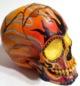 Blazon Skull