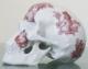 """NooN Skull - """"TJ"""" edition"""