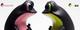 Lime_black-twelvedot-apo_frogs-twelvedot-trampt-178970t