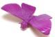 M-POP Rainbow Series 02 Mothra - purple
