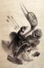 Still_im_grateful-craola_greg_simkins-acrylic-trampt-186069t