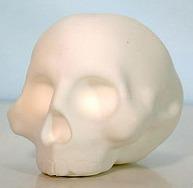 Diyfs_do_it_your_fucking_self_skull_specimen-brutherford-skull_specimen-brutherford_industries-trampt-188644m