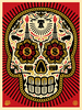 Power & Glory Day of the Dead Skull