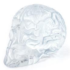 Skull_brain_clear-emilio_garcia-skull_brain_emilio_garcia-lapolap-trampt-191502m