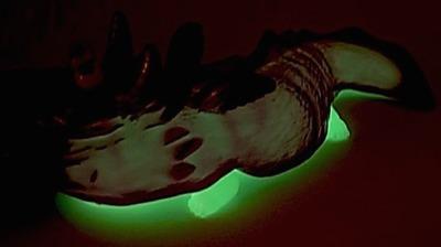 Salamandaer_cred_x_gid-t9g-salamander-museum-trampt-210385m
