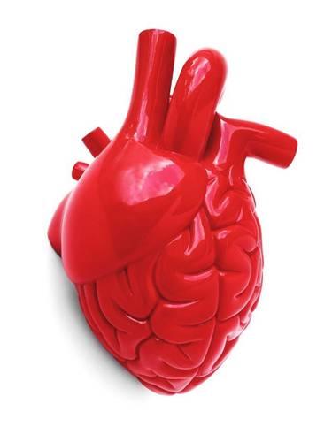 Brainheart_-_red-emilio_garcia-brainheart-lapolap-trampt-233197m
