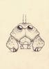 Drawing #224