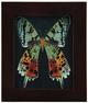 Rainbow_moth-becca_stadtlander-gouache__ink-trampt-237951t