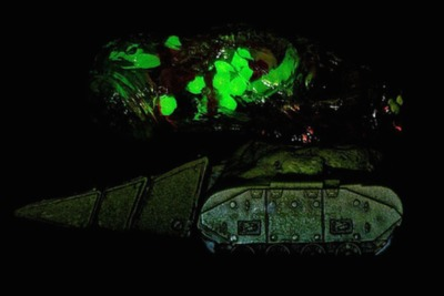 Picklebaby_tank-plaseebo_bob_conge-kaiju_tank-trampt-239594m