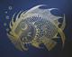 Gold Fish - Night Blue Edition