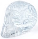 Clear Mini Skull Brain