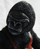 Street_art_gorilla-don_p_patrick_lippe-tequila-trampt-258946t