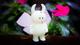 Uamou_-_butterfly_uamou_limited_edition-uamou_ayako_takagi-uamou-uamou_studio-trampt-259119t