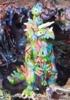 Hand Painted Modzilla