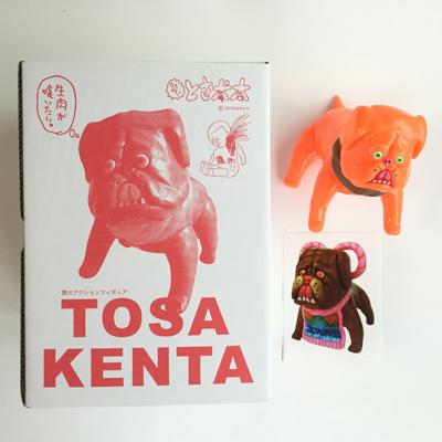 Is_the_inufutoshi_kaki_persimmon-yukinori_dehara-tosakenta-yukinori_dehara-trampt-262934m