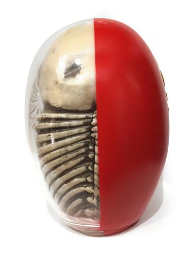 Daruma_skull_x-ray_full_color-kazzrock_secret_base-daruma_skull-secret_base-trampt-267739m