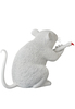 Love_rat-banksy_medicom-love_rat-medicom_toy-trampt-267807t
