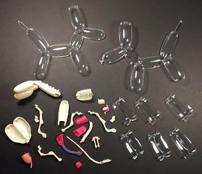 Balloon_dog_anatomy_model-jason_freeny-4d-fame_master_toys-trampt-270990m
