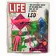 LSD MEDITATION 3