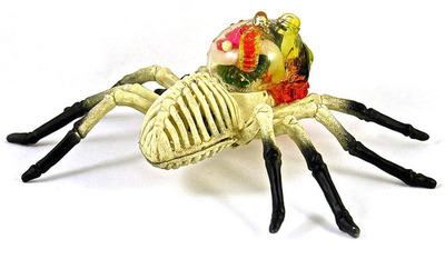 The_skullo_arachnid-plaseebo_bob_conge-arachnid-trampt-275232m