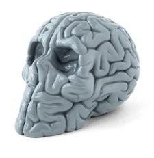 Mini_skull_brain_mono_edition-emilio_garcia-skull_brain_emilio_garcia-lapolap-trampt-275236m