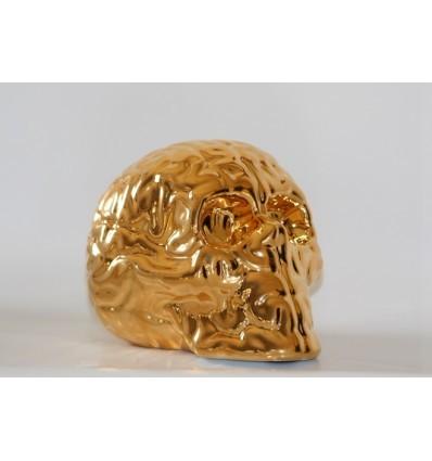 Skull_brain_-_gold-emilio_garcia-skull_brain_emilio_garcia-kolin_tribu-trampt-275645m